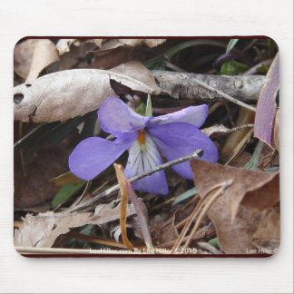 WildFlowers Birds-Foot Violet Hot Springs AR Gifts Mouse Mat