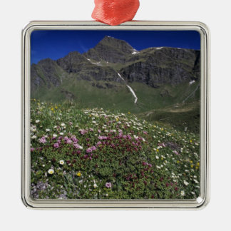Wildflowers, blooming, Alps, Switzerland Silver-Colored Square Decoration