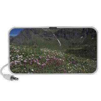 Wildflowers, blooming, Alps, Switzerland iPod Speakers