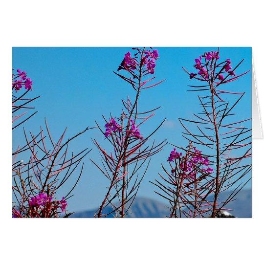 wildflowers card