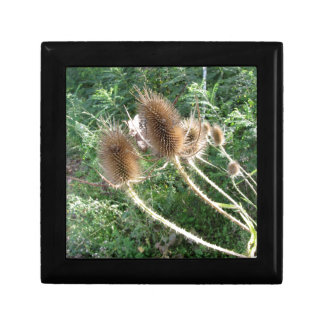 Wildflowers in the woods small square gift box