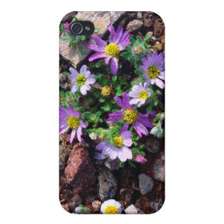 Wildflowers iPhone 4 Case