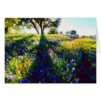 Wildflowers, Light, and Shadow Card