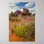 Wildflowers - Monument Valley - Arizona