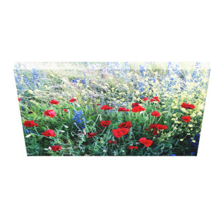 Wildflowers of England Canvas Print
