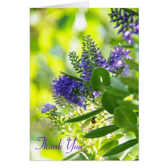 Wildflowers Purple, Thank You Card
