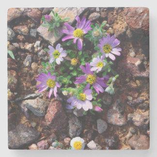Wildflowers Stone Coaster