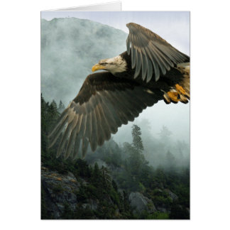 WILDLIFE Bald Eagle & Misty Forest Greeting Cards
