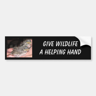 Wildlife Bumper Sticker