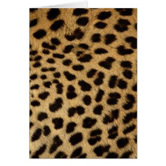 Wildlife Cards Series