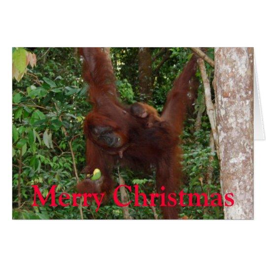 Wildlife Christmas Card