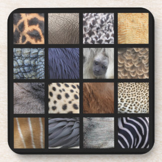 Wildlife Fur, Feathers and Scales Collage Coaster