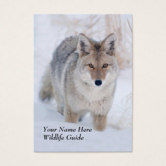 Wildlife Guide Coyote Business Card