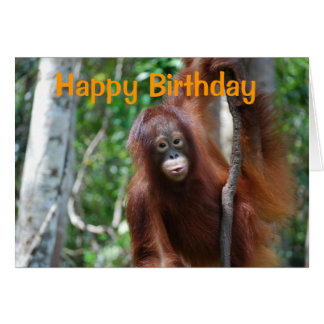 Wildlife Happy Birthday Card