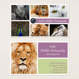 Wildlife Photographer Business Card