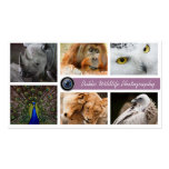 Wildlife Photographer Pack Of Standard Business Cards
