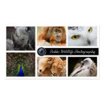 Wildlife Photography Photographer  Business Card