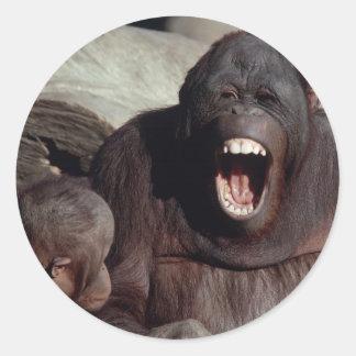 Wildlife Set - Primates 1 Round Sticker