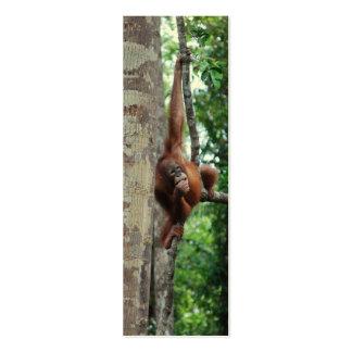 Wildlife Tree Hugger Mini Bookmarks Business Cards