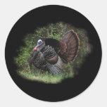 WildTurkey on the prowl Round Sticker