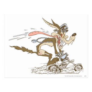 Wile E. Coyote Cycle Racer Postcard
