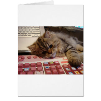 Will work for a catnip greeting card
