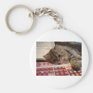 Will work for a catnip basic round button key ring