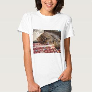 Will work for a catnip shirt