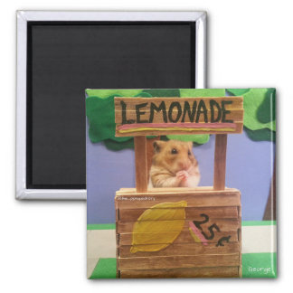 Will You Buy Some Lemonade? Pretty Please? Square Magnet