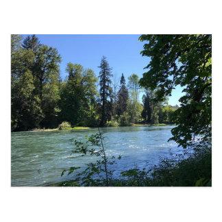 Willamette River, Elijah Bristow State Park Postcard