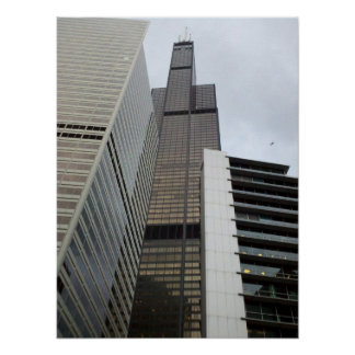 Willis Tower and a Seagull Poster