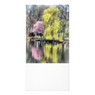 Willow and Cherry by Lake Photo Card