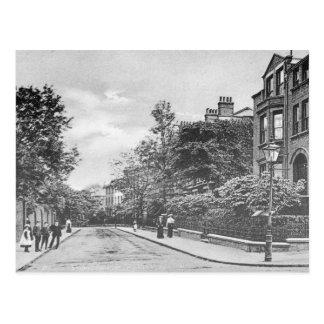 Willow Bridge Road, Canonbury, Islington, c.1905 Postcard