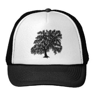 Willow Cap