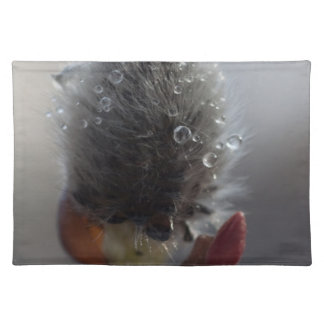 Willow Catkin Study Place Mat