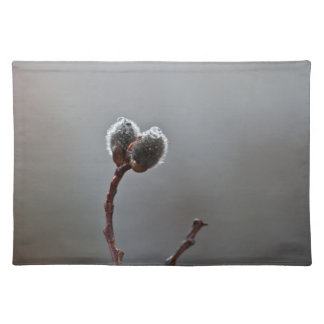 Willow Catkins After Spring Rain Placemats