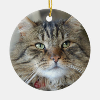 Willow the cat christmas ornament
