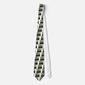 WILLY WAGTAIL ON FENCE QUEENSLAND AUSTRALIA TIE