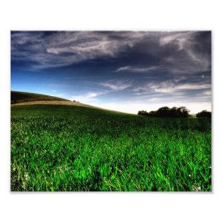Wilmington Fields Photograph