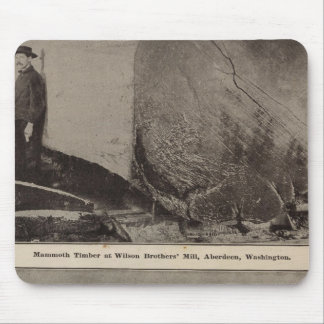 Wilson Bros Mill Bird's eye view of Aberdeen Mouse Pad
