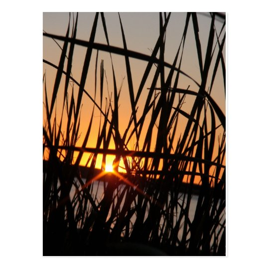 WILSON LAKE SUNSET POSTCARD