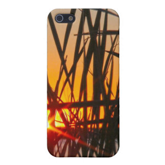 Wilson Sunset Case Case For The iPhone 5