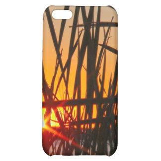 Wilson Sunset Case iPhone 5C Case
