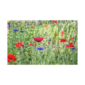 Wimpole Meadow Canvas Print