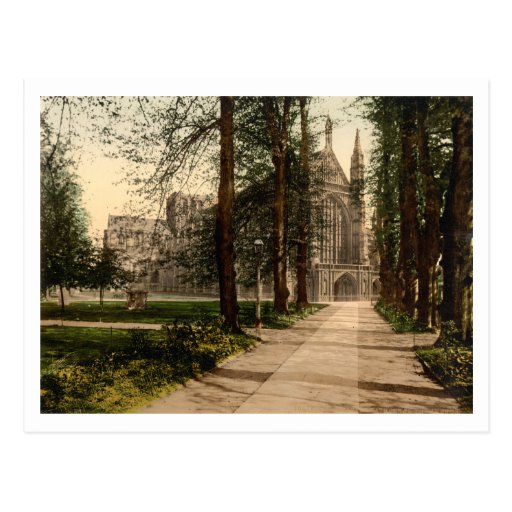 Winchester Cathedral, Hampshire, England Post Cards