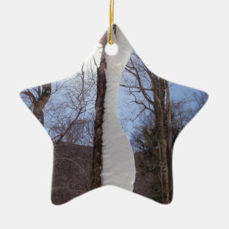 Wind and snow sculpted tree. christmas ornament