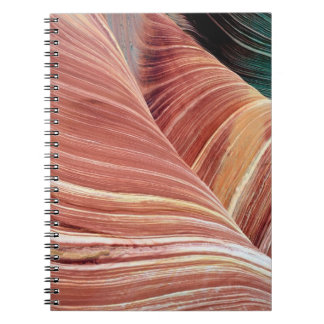 Wind and water eroded Navajo  sandstone in Note Books