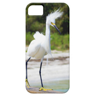 Wind blown Snowy Egret Barely There iPhone 5 Case