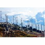 Wind Power (3) Photo Sculptures
