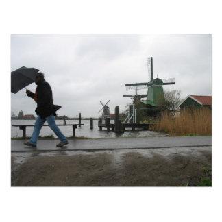 Wind & Rain at Zaanse Schans Windmills Postcard